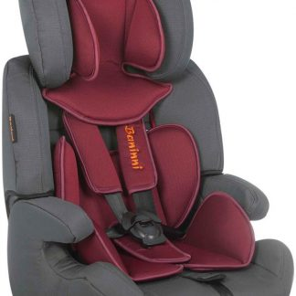 Autostoel Baninni Pedro Red-Gray BN517 (9-36kg)