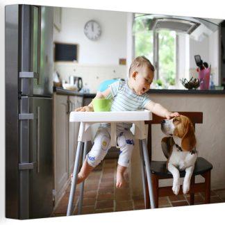 Baby in kinderstoel aait een hond 90x60 cm - Foto print op Canvas schilderij (Wanddecoratie woonkamer / slaapkamer)