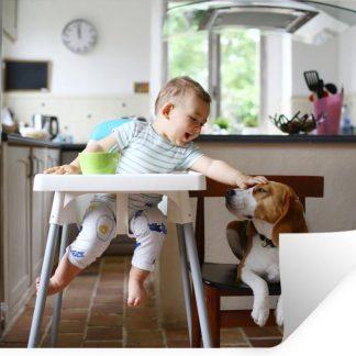 Muursticker Baby's met dieren - Baby in kinderstoel aait een hond - 60x40 cm - zelfklevend plakfolie - herpositioneerbare muur sticker